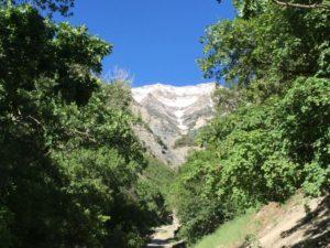 Battle Creek Falls - Trail View Mount Timpanogos